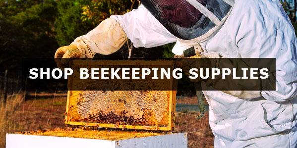 Buy Beekeeping Supplies
